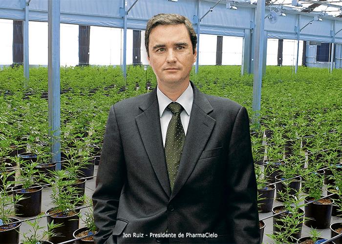 Arrancó el negocio de la marihuana medicinal en Colombia