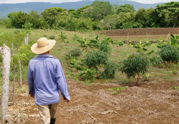 El reto de vivir una cuarentena en el campo colombiano