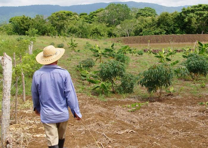 Falta mucha tierra para la paz en Colombia