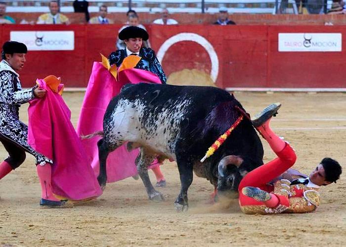 En venganza matarán a toda la familia del toro que mató al torero Victor Barrio