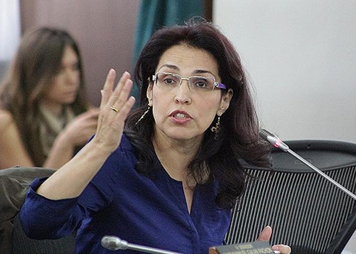 El referendo de Viviane Morales ¿Una cruzada anti-gay?