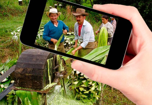 Agronet: el mundo del campo en su celular