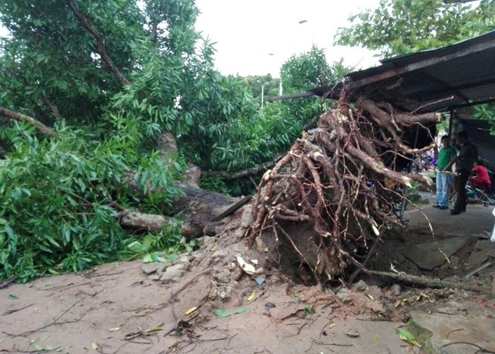 Video: Vendaval destruye Puerto Carreño, Vichada