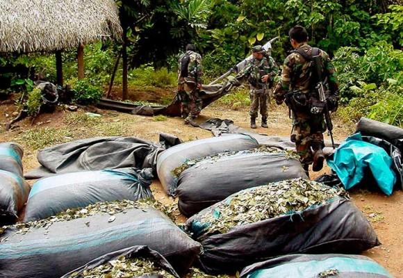 Así operan los grupos armados y el narcotráfico en el Amazonas