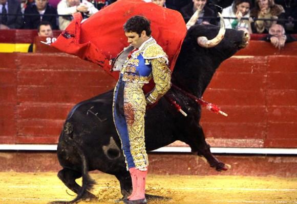Corridas de toros, cada vez más cerca de su prohibición definitiva