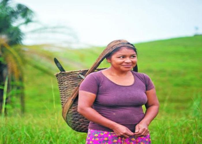 Hay que educar en género a la sociedad colombiana
