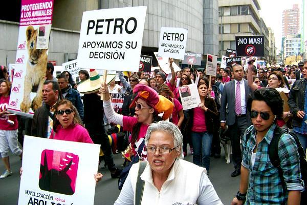 Petro estaba en la manifestación antitaurina, buscando votos, tomándose fotos