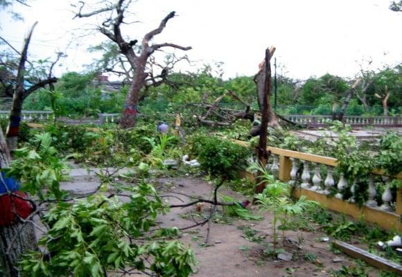 La Escuela Normal Superior La Hacienda de Barranquilla, una reserva ecológica que quieren destruir