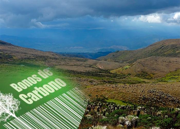 Colombia venderá bonos de carbono de los páramos a países industrializados