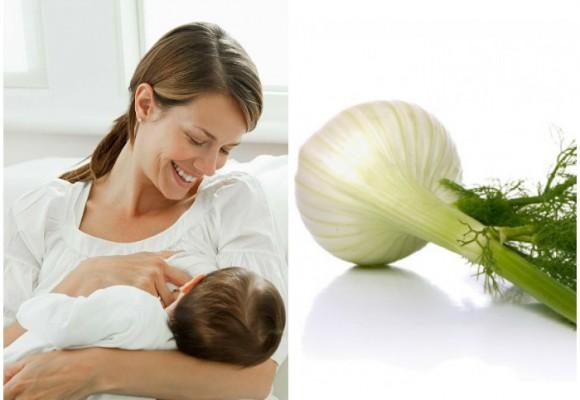 El hinojo, la infusión ideal para madres lactantes
