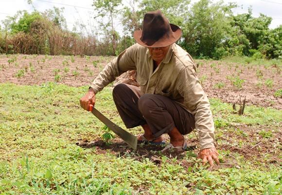¿Rivalizan las Zidres con la Reforma Rural Integral?
