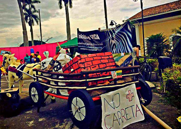 El sueño de los animales en Buga: inicia proceso de sustitución de vehículos de tracción animal