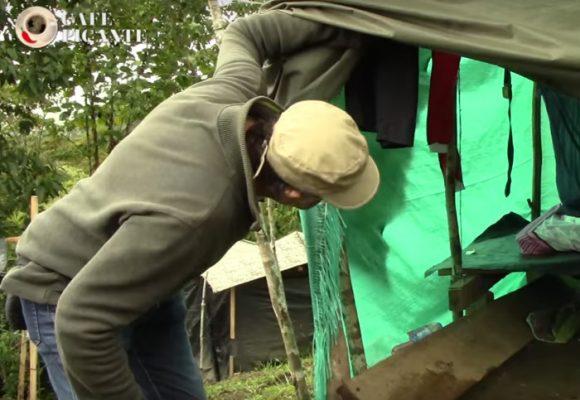 Video: Los hoteles cinco estrellas que el gobierno les dio a las Farc