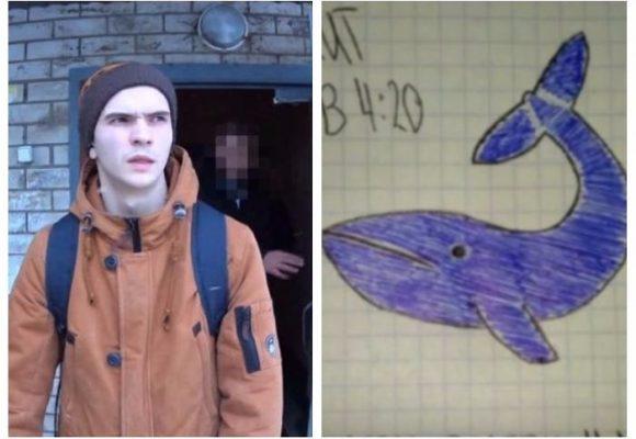 ¿Quién está detrás de los suicidios de la ballena azul?