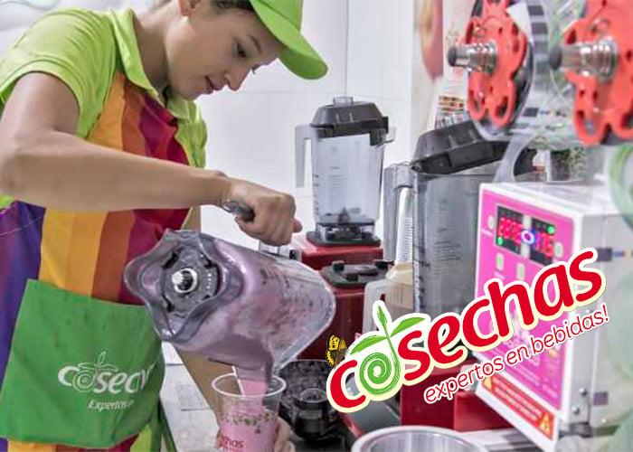 Cosechas: el lucrativo negocio de exprimir frutas