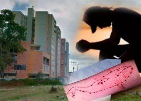 ¿Dos nuevos suicidios en Bogotá asociados a la ballena azul?