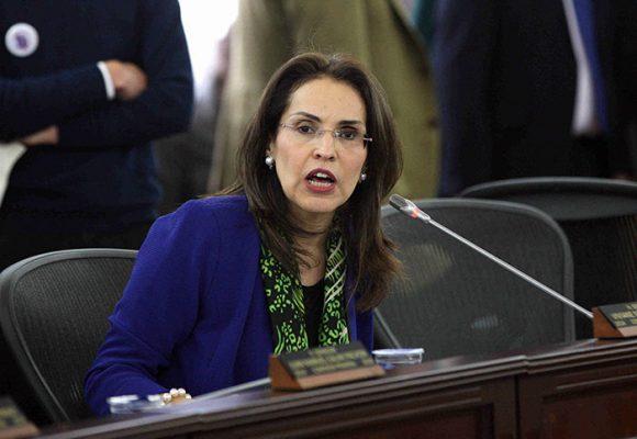 Viviane Morales, no fastidie ni divida más a este país
