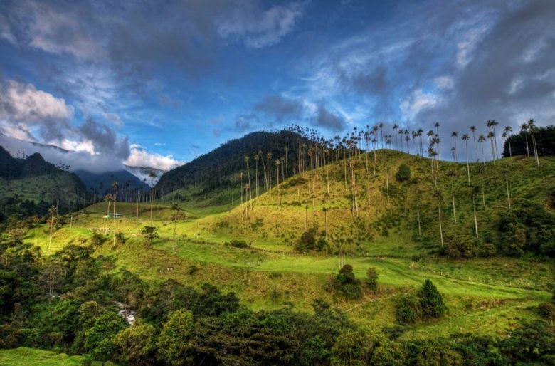 La historia de la tierra en Colombia: el negocio de la paz y de la guerra