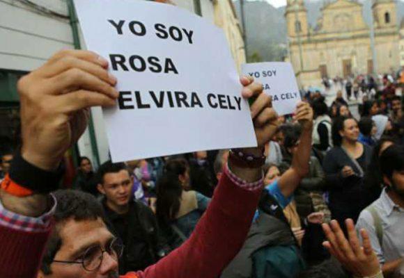 Dos años de la ley contra feminicidio Rosa Elvira Cely