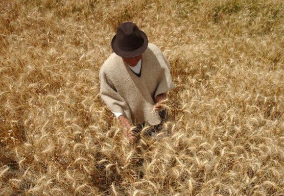 Reforma rural integral, ¿oportunidad para el campo boyacense?