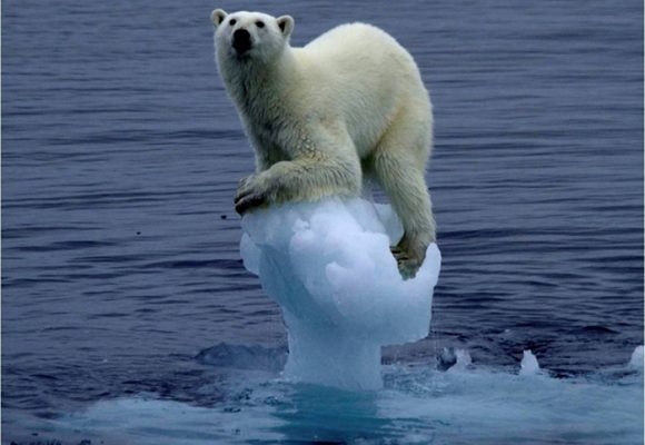 ¿Qué es y cómo nos afecta el cambio climático?