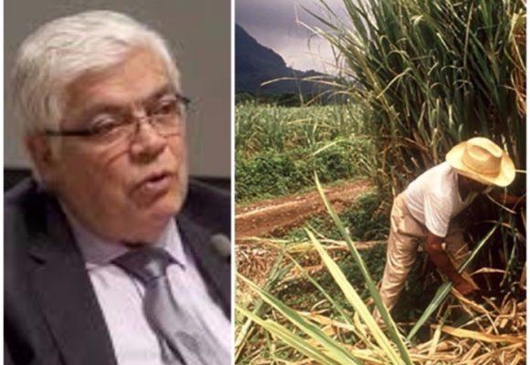 Miradas sesgadas sobre la agroindustria