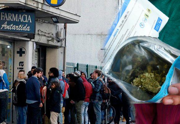 Video: Marihuaneros hacen fiesta en las farmacias de Uruguay