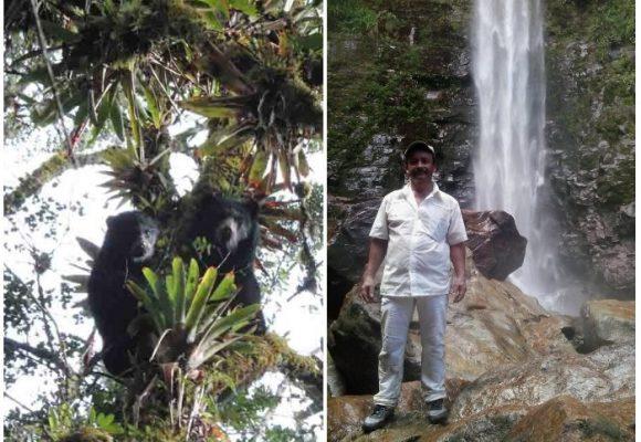 El campesino que cazaba osos y ahora se dedica a cuidarlos