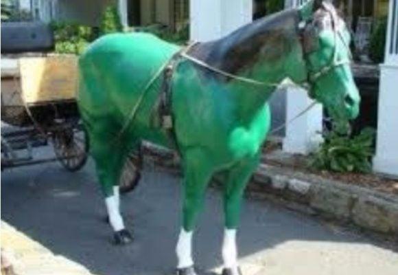 El caballo verde y la genética