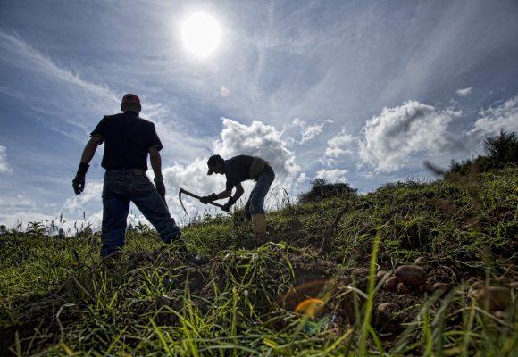 Antecedentes históricos de la reforma rural integral colombiana (Segunda parte)
