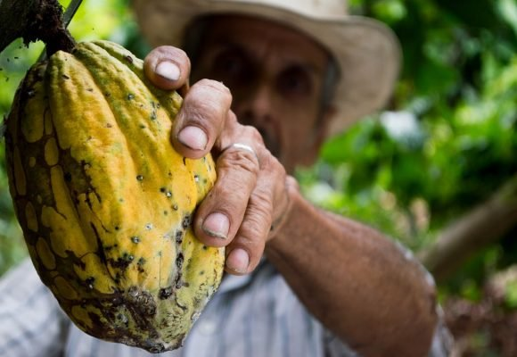 Antecedentes históricos de la reforma rural integral colombiana (Parte final)