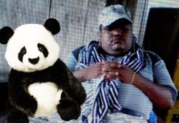 El oso panda de peluche que le costó la vida a alias Inglaterra, el segundo del Clan del Golfo