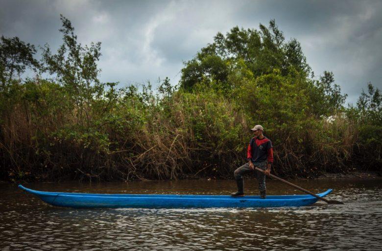 Con la declaración de Cabo Manglares, Colombia completa 28,9 millones de hectáreas de áreas protegidas