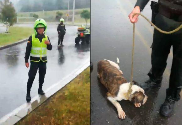 EN VIDEO: Policía torturó a un perro amarrándolo y arrastrándolo en una moto
