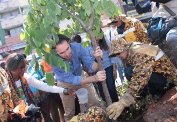 Con más de 20.000 árboles sembrados, Medellín quiere contrarrestar la contaminación del aire