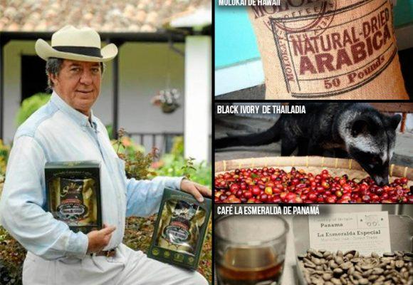 Café colombiano entre los más caros del mundo. TOP 10