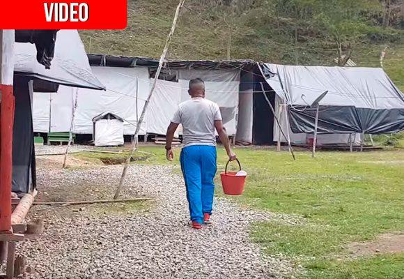 """""""Nos traicionaron"""", dicen los pocos jóvenes que aún quedan en el campamento Alfonso Cano"""