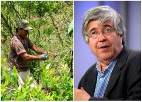 Crisis entre Gobierno Santos y los cocaleros