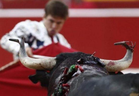¿En qué va el proyecto de ley que prohíbe las corridas de toros?