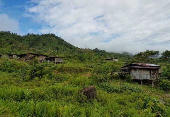 Restitución de tierras, ¿sueño o realidad?