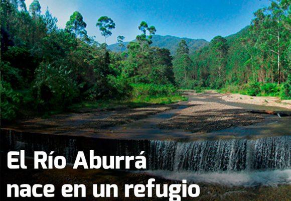 El santuario natural que se esconde detrás de las montañas de Medellín