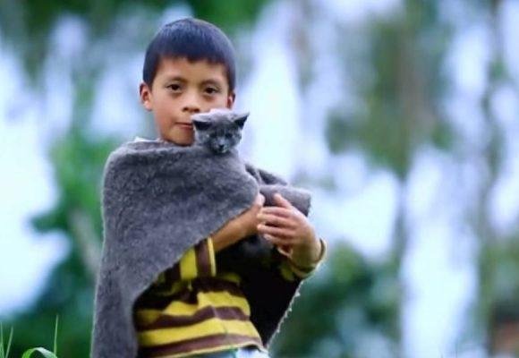 David, el pequeño campesino que va a ganar La voz kids