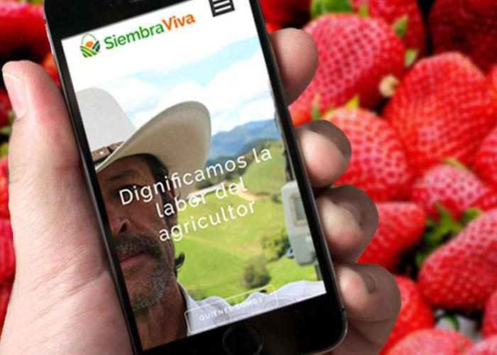 SiembraViva, los productos del campo a un click de distancia