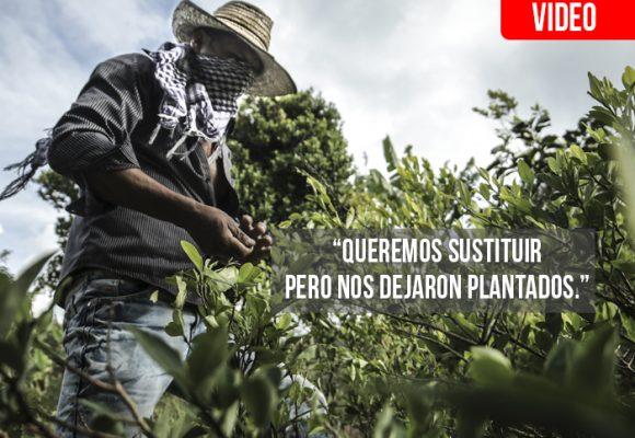 Coca, el fracaso de Santos