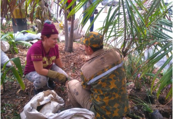 Los jardineros de Medellín que le ganaron la batalla al cemento
