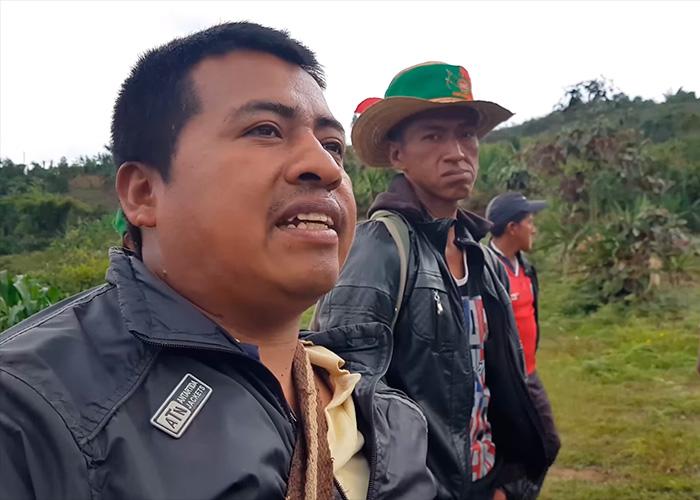 Indígenas caucanos entran en la onda de lo orgánico