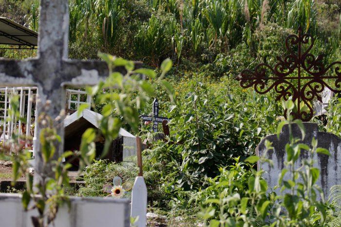 La oleada de asesinatos de líderes sociales, que desde 2016 ya suman 343, se ensañó con el Cauca, obligado a poner el pecho de 84 mujeres y hombres que ahora descansan en tumbas roídas por el tiempo.