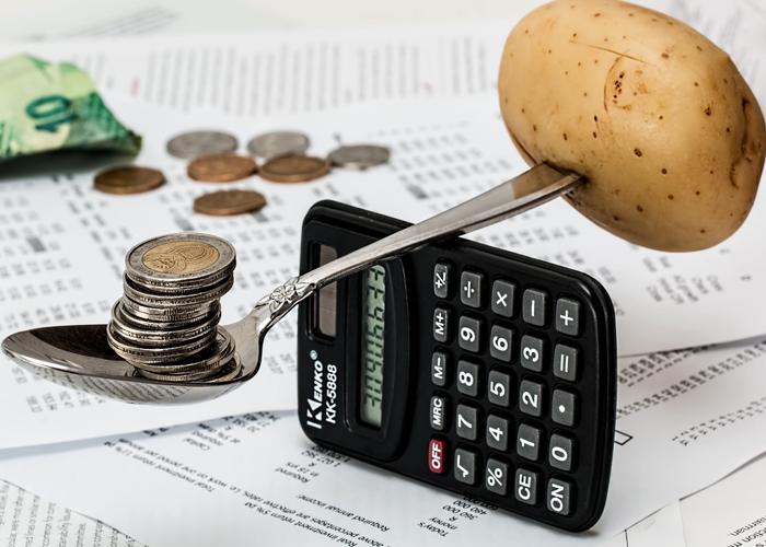 Grefier: presupuesto ciudadano, manifestación de parte, principio de merecimiento y control a gastos indebidos