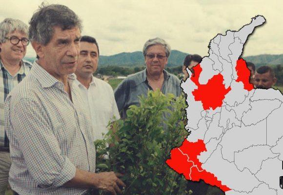 El mapa de la coca en Colombia: ONU con alarmas prendidas