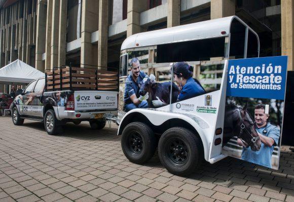 Los animales paisas cuentan con ambulancia propia